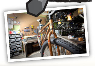 Tree Fort Bikes Service Deaprtment Picture
